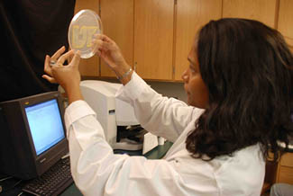 Woman analyzing sample from Biomass Fractionation