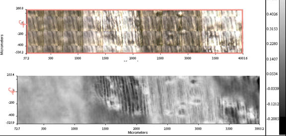 Magnified wood sample images