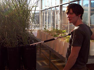 Technician collecting sample data in greenhouse